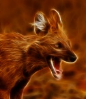 Electric Dhole - India